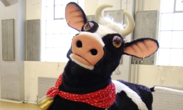 BEN & JERRY'S SEARCH FOR THE NATION'S MOST MOOVELLOUS PANTO